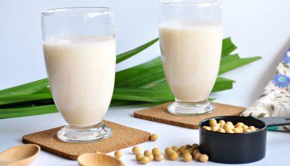 Susu Kedelai