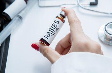 Rabies pada Manusia